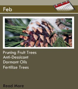 Main Page_Feb