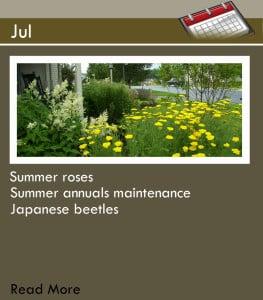 Main Page_Jul