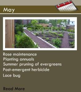 Main Page_May