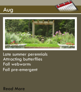 Main Page_Aug